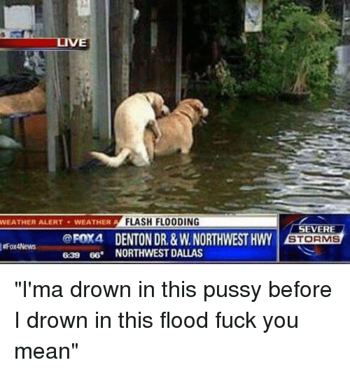 "Fuck You Meaning: WEATHER FLASH FLOODING  WEATHER ALERT A  FOX4 DENTON DR. &w.NORTHWESTHWY  RFox4News  639 66. NORTHWEST DALLAS  SEVERE  STORMS ""I'ma drown in this pussy before I drown in this flood fuck you mean"""
