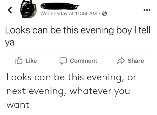 Wednesday, Boy, and Next: Wednesday at 11:44 AM  Looks can be this evening boy I tell  ya  Like  Share  Comment Looks can be this evening, or next evening, whatever you want