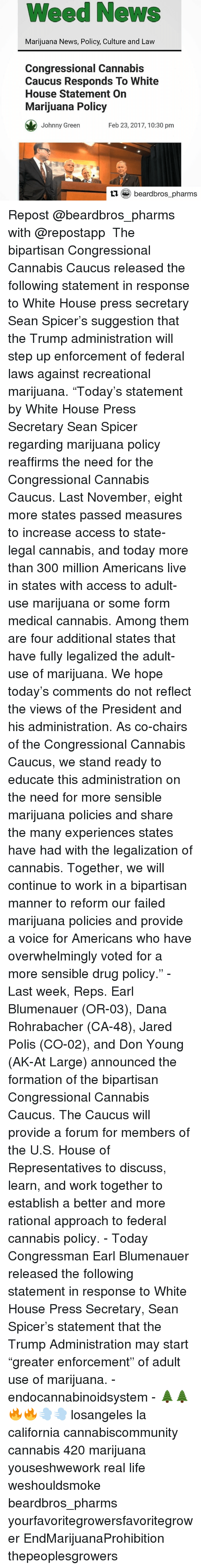 """Johnnies: Weed News  Marijuana News, Policy, Culture and Law  Congressional Cannabis  Caucus Responds To White  House Statement On  Marijuana Policy  Feb 23, 2017, 10:30 pm  Johnny Green  beardbros pharms Repost @beardbros_pharms with @repostapp ・・・ The bipartisan Congressional Cannabis Caucus released the following statement in response to White House press secretary Sean Spicer's suggestion that the Trump administration will step up enforcement of federal laws against recreational marijuana. """"Today's statement by White House Press Secretary Sean Spicer regarding marijuana policy reaffirms the need for the Congressional Cannabis Caucus. Last November, eight more states passed measures to increase access to state-legal cannabis, and today more than 300 million Americans live in states with access to adult-use marijuana or some form medical cannabis. Among them are four additional states that have fully legalized the adult-use of marijuana. We hope today's comments do not reflect the views of the President and his administration. As co-chairs of the Congressional Cannabis Caucus, we stand ready to educate this administration on the need for more sensible marijuana policies and share the many experiences states have had with the legalization of cannabis. Together, we will continue to work in a bipartisan manner to reform our failed marijuana policies and provide a voice for Americans who have overwhelmingly voted for a more sensible drug policy."""" - Last week, Reps. Earl Blumenauer (OR-03), Dana Rohrabacher (CA-48), Jared Polis (CO-02), and Don Young (AK-At Large) announced the formation of the bipartisan Congressional Cannabis Caucus. The Caucus will provide a forum for members of the U.S. House of Representatives to discuss, learn, and work together to establish a better and more rational approach to federal cannabis policy. - Today Congressman Earl Blumenauer released the following statement in response to White House Press Secretary, Sean Spicer's statement that th"""