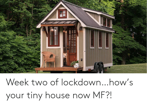 tiny: Week two of lockdown…how's your tiny house now MF?!