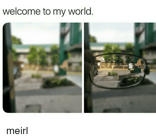 World, MeIRL, and My World: welcome to my world meirl