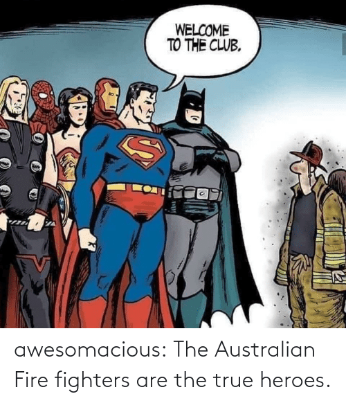 Welcome To: WELCOME  TO THE CLUB. awesomacious:  The Australian Fire fighters are the true heroes.
