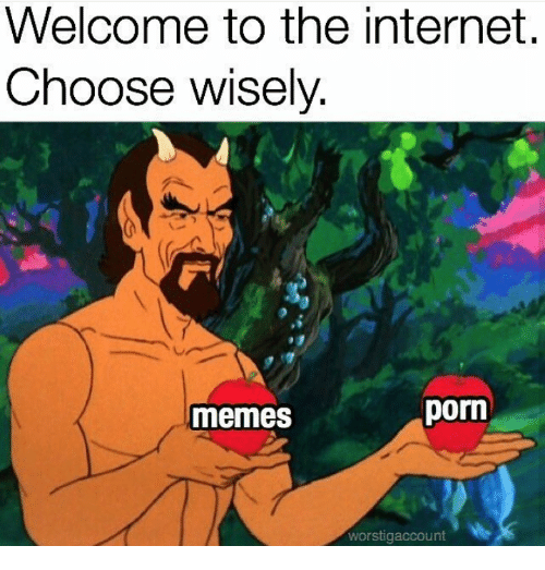 Internet, Memes, and Porn: Welcome to the internet,  Choose wisely  -e  memes  porn  worstigaccount