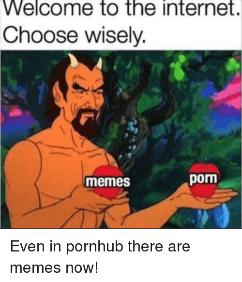 Internet, Memes, and Pornhub: Welcome to the internet.  Choose wisely.  memes  porn
