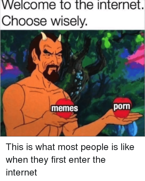 Internet, Memes, and Reddit: Welcome to the internet.  Choose wisely.  memes  porn