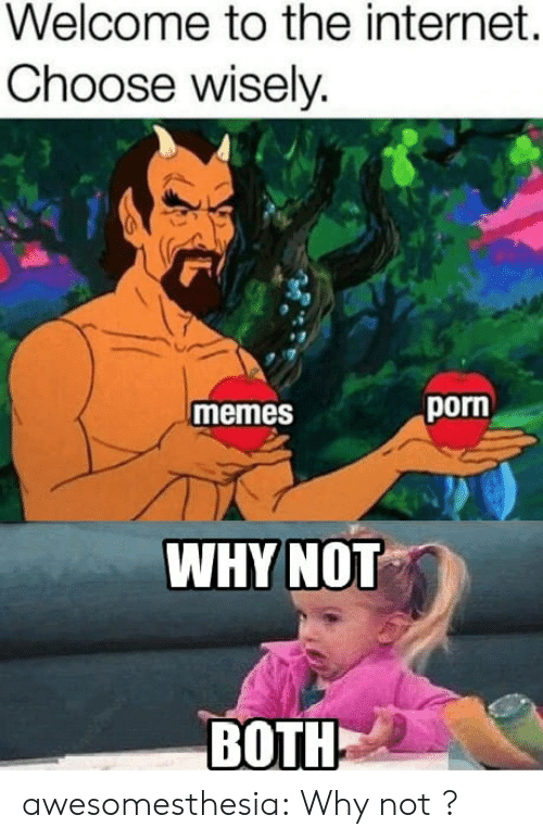 Internet, Memes, and Tumblr: Welcome to the internet.  Choose wisely.  porn  memes  WHYNOT  BOTH awesomesthesia:  Why not ?