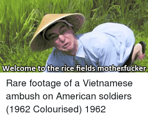 rare footage: Welcome to the rice fields motherfucker Rare footage of a Vietnamese ambush on American soldiers (1962 Colourised) 1962