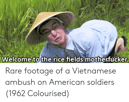 rare footage: Welcome to the rice fields motherfucker Rare footage of a Vietnamese ambush on American soldiers (1962 Colourised)