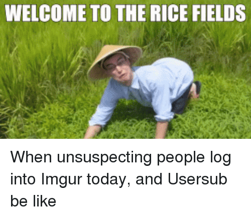 Usersub: WELCOME TO THE RICE FIELDS When unsuspecting people log into Imgur today, and Usersub be like