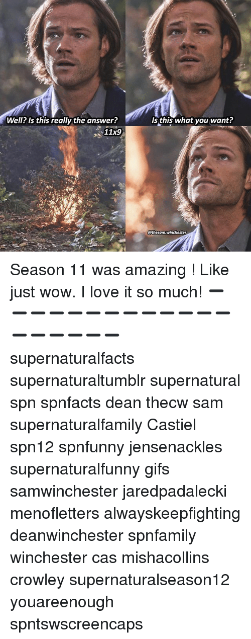 season 11: Well? Is this really the answer?  Is this what you want?  11x9  thesam.winchester Season 11 was amazing ! Like just wow. I love it so much! ➖➖➖➖➖➖➖➖➖➖➖➖➖➖➖➖➖➖➖ supernaturalfacts supernaturaltumblr supernatural spn spnfacts dean thecw sam supernaturalfamily Castiel spn12 spnfunny jensenackles supernaturalfunny gifs samwinchester jaredpadalecki menofletters alwayskeepfighting deanwinchester spnfamily winchester cas mishacollins crowley supernaturalseason12 youareenough spntswscreencaps
