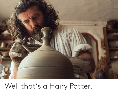 Potter, Well, and Hairy: Well that's a Hairy Potter.