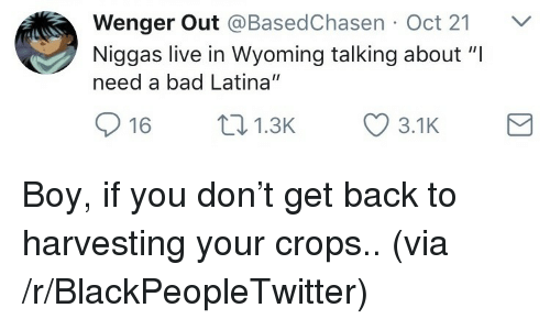 "Harvesting: Wenger Out @BasedChasen Oct 21 V  Niggas live in Wyoming talking about ""I  need a bad Latina""  16 1.3 3.1K <p>Boy, if you don't get back to harvesting your crops.. (via /r/BlackPeopleTwitter)</p>"