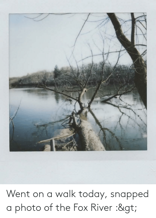 The Fox: Went on a walk today, snapped a photo of the Fox River :>