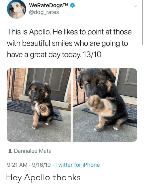 Apollo: WeRateDogsTM  @dog_rates  This is Apollo. He likes to point at those  with beautiful smiles who are going to  have a great day today. 13/10  & Dannalee Mata  9:21 AM 9/16/19 Twitter for iPhone Hey Apollo thanks
