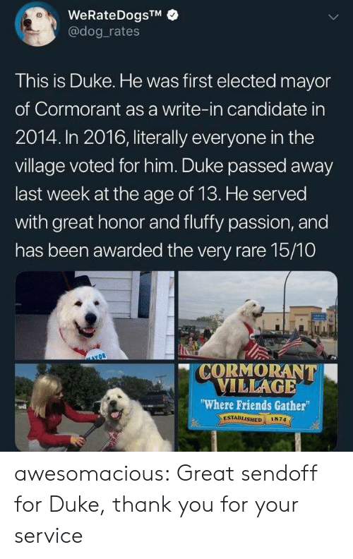 "Friends, Tumblr, and Thank You: WeRateDogsTM  @dog rates  This is Duke. He was first elected mayor  of Cormorant as a write-in candidate in  2014. In 2016, literally everyone in the  village voted for him. Duke passed away  last week at the age of 13. He served  with great honor and fluffy passion, and  has been awarded the very rare 15/10  CORMORANT  VILLAGE  ""Where Friends Gather  ESTABLISHED  1874 awesomacious:  Great sendoff for Duke, thank you for your service"