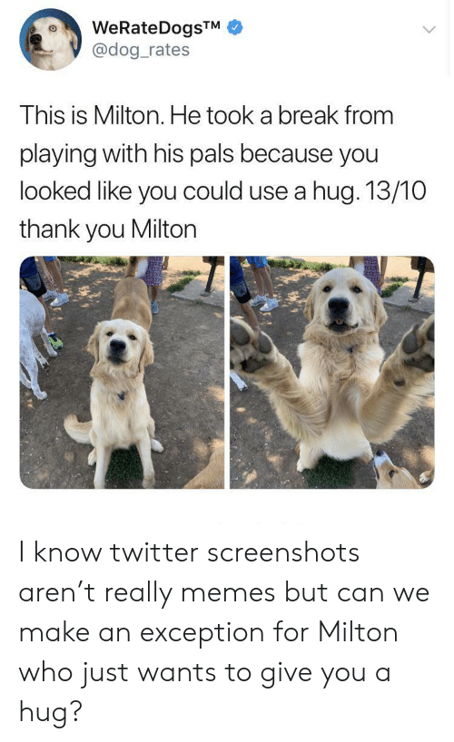Screenshots: WeRateDogsTM  @dog_rates  This is Milton. He took a break from  playing with his pals because you  looked like you could use a hug. 13/10  thank you Milton I know twitter screenshots aren't really memes but can we make an exception for Milton who just wants to give you a hug?