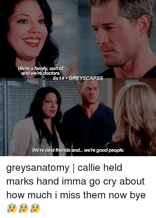 Imma Go: Were a family, sort of  and were doctors.  6x14 GREY SCAPSS  Were best friends and... were good people. greysanatomy | callie held marks hand imma go cry about how much i miss them now bye 😰😰😰