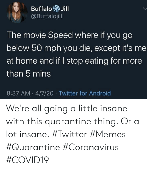 Memes, Twitter, and Quarantine: We're all going a little insane with this quarantine thing. Or a lot insane. #Twitter #Memes #Quarantine #Coronavirus #COVID19