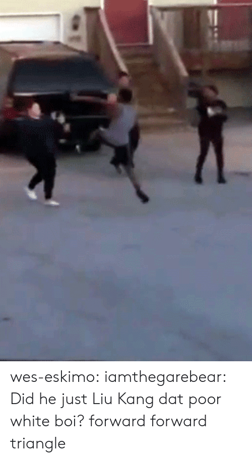 Tumblr, Blog, and Http: wes-eskimo:  iamthegarebear:  Did he just Liu Kang dat poor white boi?  forward forward triangle