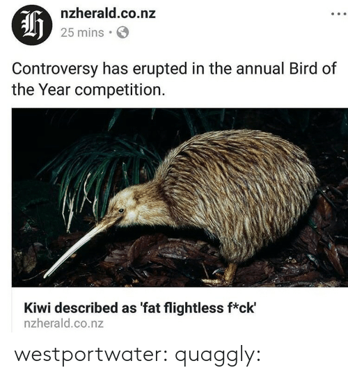 gif: westportwater:  quaggly: