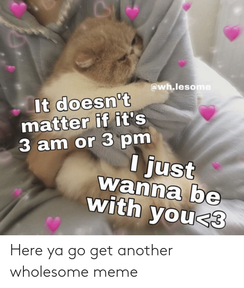 matter: @wh.lesome  It doesn't  matter if it's  3 am or 3 pm  I just  wanna be  with you<3 Here ya go get another wholesome meme