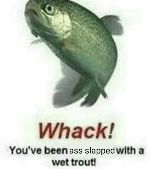 Ass, Been, and Wet: Whack!  You've been ass slapped with a  wet trout!