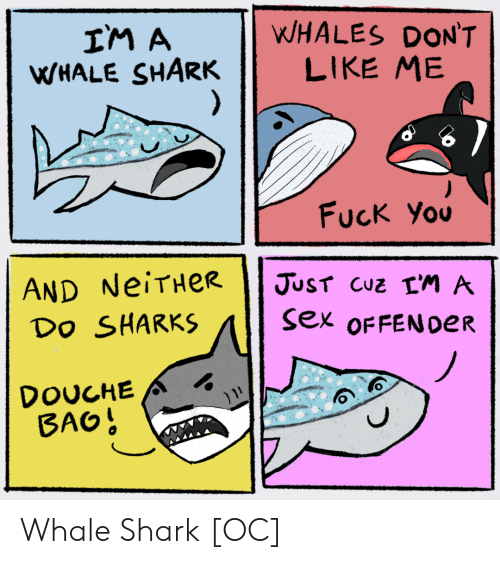 whales: WHALES DON'T  LIKE ME  IM A  WHALE SHARK  )  Fuck You  AND NeiTHeR  Do SHARKS  JUST CUZ LM A  sex OFFEN0ER  DOUCHE  BAO! Whale Shark [OC]