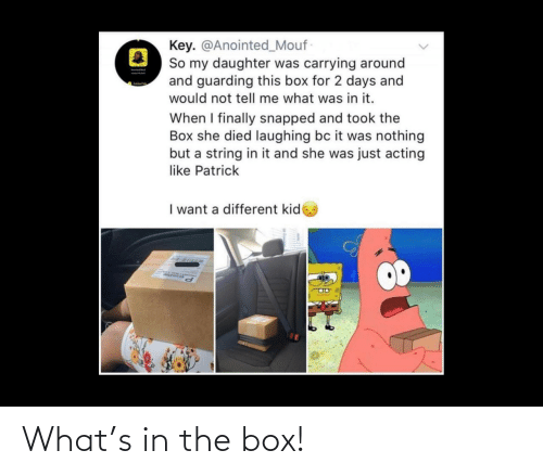 what: What's in the box!