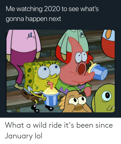 Wild: What a wild ride it's been since January lol