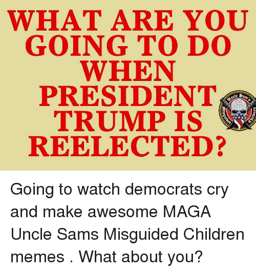 Sams: WHAT ARE  GOING TO D0  WHEN  PRESIDENT  TRUMP IS  REELECTED?  1775 Going to watch democrats cry and make awesome MAGA Uncle Sams Misguided Children memes . What about you?