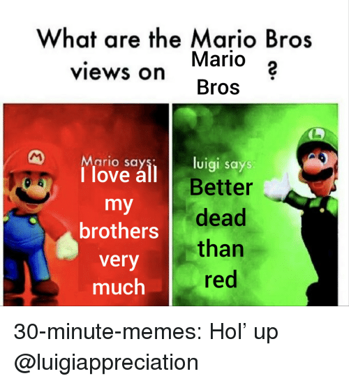 mario bros: What are the Mario Bros  Mario 2  Bros  views on  Mario say  1 love all B  luigi says  Better  brothers dead  very  much  than  red 30-minute-memes:  Hol' up  @luigiappreciation