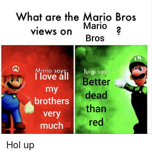 mario bros: What are the Mario Bros  Mario 2  Bros  views on  Mario say  1 love all B  luigi says  Better  brothers dead  very  much  than  red Hol up