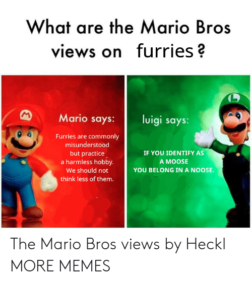 mario bros: What are the Mario Bros  views on furries?  Mario says: luigi says:  Furries are commonly  misunderstood  but practice  a harmless hobby.  We should not  think less of them.  IF YOU IDENTIFY AS  A MOOSE  YOU BELONG IN A NOOSE. The Mario Bros views by Heckl MORE MEMES