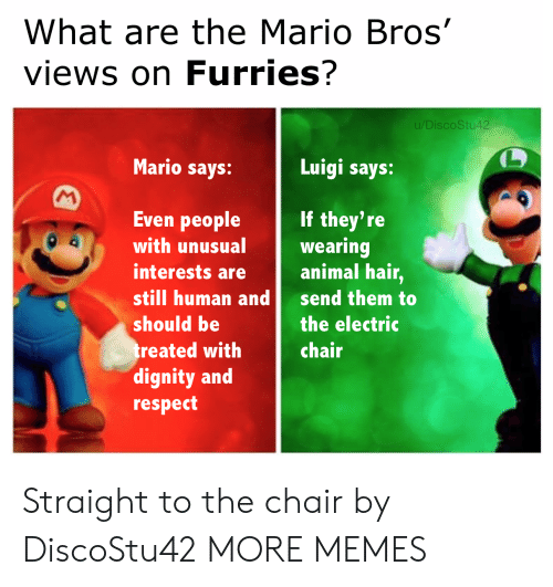 mario bros: What are the Mario Bros'  views on Furries?  u/DiscoStu42  Mario says:  Luigi says:  M  Even people  If they're  wearing  animal hair,  with unusual  interests are  still human and  send them to  should be  the electric  treated with  dignity and  respect  chair Straight to the chair by DiscoStu42 MORE MEMES