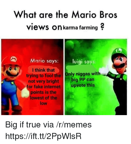 mario bros: What are the Mario Bros  views On karma farming ?  Mario says: luigi says  I think that  trying to fool the Only niggas with  not very bright big PP can  or fake internet upvote this  points is the  lowest of the  low Big if true via /r/memes https://ift.tt/2PpWlsR
