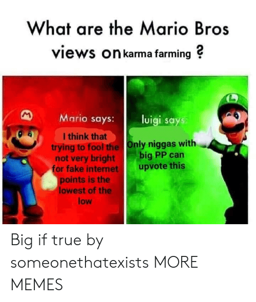 mario bros: What are the Mario Bros  views On karma farming ?  Mario says: luigi says  I think that  trying to fool the Only niggas with  not very bright big PP can  or fake internet upvote this  points is the  lowest of the  low Big if true by someonethatexists MORE MEMES