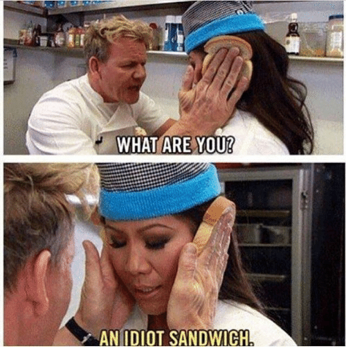 Idiot Sandwich: WHAT ARE YOU!  AN IDIOT SANDWICH