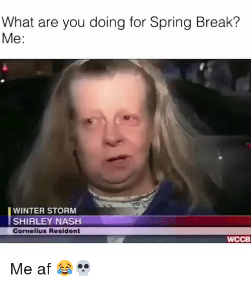 shirley: What are you doing for Spring Break?  Me:  WINTER STORM  SHIRLEY NASH  Cornelius Resident  WCCB Me af 😂💀