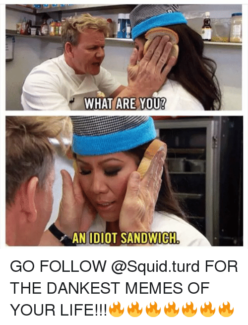 Idiot Sandwich: WHAT ARE YOUR  AN IDIOT SANDWICH GO FOLLOW @Squid.turd FOR THE DANKEST MEMES OF YOUR LIFE!!!🔥🔥🔥🔥🔥🔥🔥