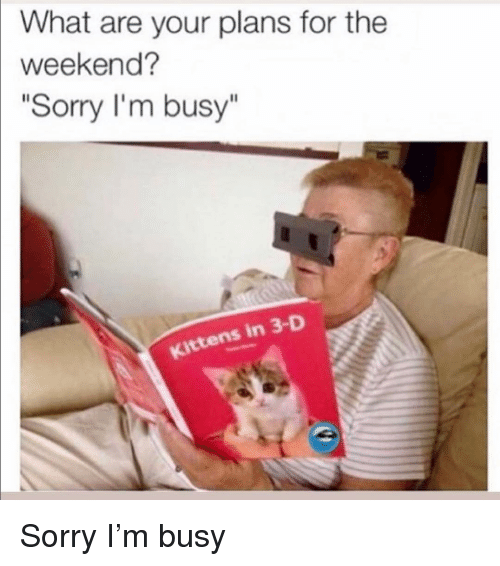 "im busy: What are your plans for the  weekend?  ""Sorry I'm busy""  Kittens in 3-D Sorry I'm busy"