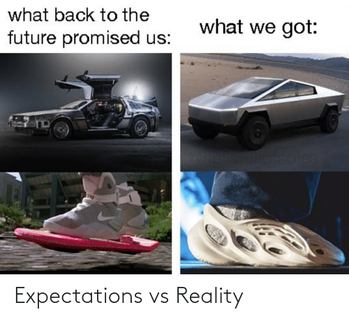 Vs Reality: what back to the  what we got:  future promised us:  soles Expectations vs Reality