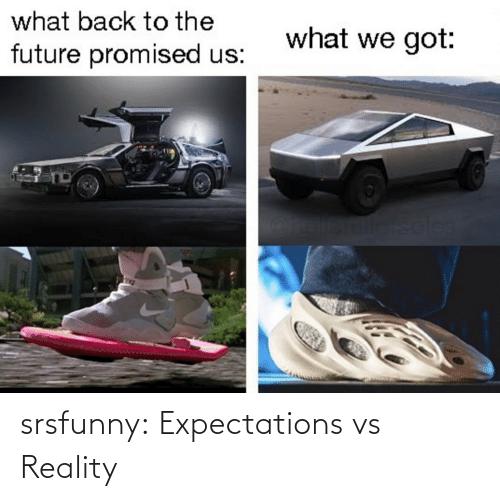 Vs Reality: what back to the  what we got:  future promised us:  soles srsfunny:  Expectations vs Reality