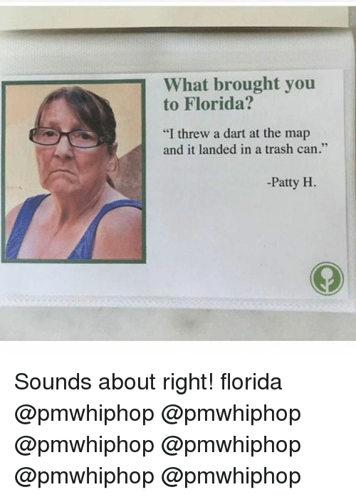 "Memes, Trash, and Florida: What brought you  to Florida?  ""I threw a dart at the map  and it landed in a trash can.""  Patty H Sounds about right! florida @pmwhiphop @pmwhiphop @pmwhiphop @pmwhiphop @pmwhiphop @pmwhiphop"