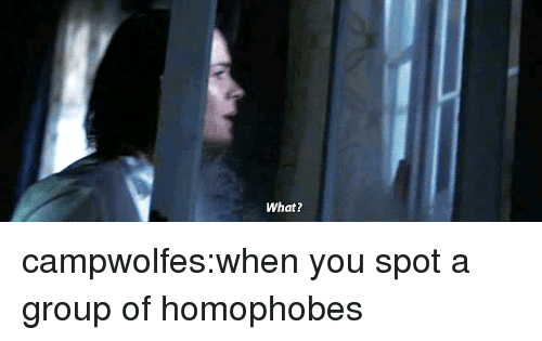 Target, Tumblr, and Blog: What? campwolfes:when you spot a group of homophobes