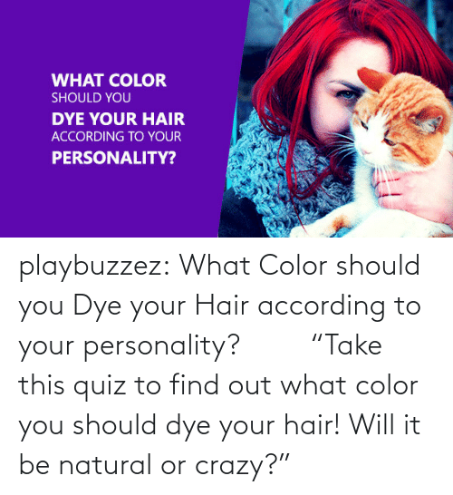 "What Color: WHAT COLOR  SHOULD YOU  DYE YOUR HAIR  ACCORDING TO YOUR  PERSONALITY? playbuzzez:  What Color should you Dye your Hair according to your personality?          ""Take this quiz to find out what color you should dye your hair! Will it be natural or crazy?"""