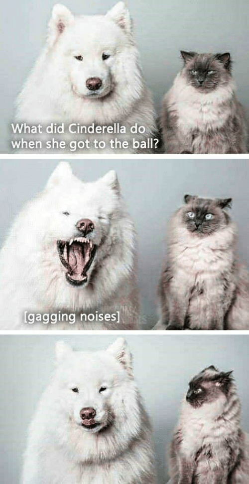 Cinderella , Got, and She: What did Cinderella do  when she got to the ball?  gagging noises]