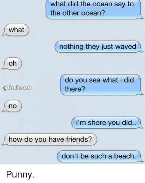 Punnies: what did the what did the ocean say to  the other ocean?  what  nothing they just waved  oh  do you sea what i did  TrolismxD  there?  no  i'm shore you did.  how do you have friends?  don't be such a beach. Punny.