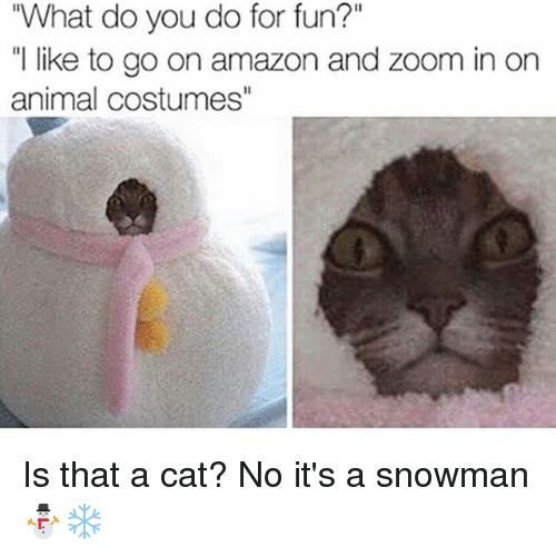 """Zooming In: """"What do you do for fun?""""  """"l like to go on amazon and zoom in on  animal costumes"""" Is that a cat? No it's a snowman ⛄️❄️"""