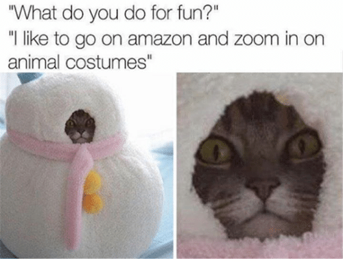 """Zooming In: """"What do you do for fun?""""  like to go on amazon and zoom in on  animal costumes"""""""