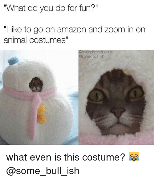 """Zooming In: """"What do you do for fun?""""  like to go on amazon and zoom in on  animal costumes""""  Gasleepinthemuseum  some bullish what even is this costume? 😹@some_bull_ish"""